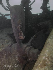 IMG_4537 (jodylynn007) Tags: ocean canada canon underwater britishcolumbia scuba powershot pacificnorthwest scubadiving wreck pipeline sola britannia brittania lightmotion inon s95 inond2000 jodyclark inonucl165 nauticam canonpowershots95 fixhousing jodylynn007hotmailcom jodylynnclark