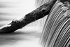 Iced Fall (DavioTheOne) Tags: longexposure winter blackandwhite bw snow tree art ice nature water canon waterfall log stream artistic smooth artsy icy artland artisticphotography canonef24105mmf4lis flickraward canon5dmarkiii flickraward5 flickrawardgallery canon5d3 canon5dmark3