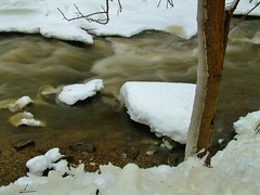 Fast Moving Creek (evanlochem) Tags: winter snow ontario canada storm water rain creek december spencer dundas