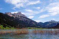 Am See (Jos Mecklenfeld) Tags: lake mountains alps berg landscape austria see tirol oostenrijk sterreich meer hiking bergen alpen landschaft ricoh landschap roteflh haldensee ricohgx200