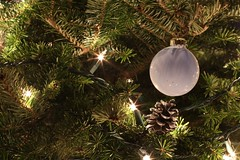 Christmas (Andy Ziegler) Tags: christmas detail pine lights cone christmastree ornament