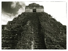 Temple I (Rob Shenk) Tags: stone sepia temple ancient pyramid maya guatemala mayan tikal rugged