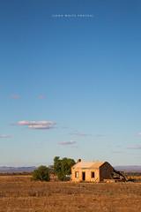 Flinders Ranges (john white photos) Tags: house building flat australian ruin dry australia hut outback remote southaustralia flindersranges