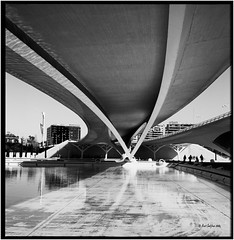 Under the bridge_Rolleiflex 2.8E (ksadjina) Tags: film valencia analog blackwhite spain scan 400asa kodak100tmax rolleiflex28e adoxaph09 carlzeissplanar80mmf128