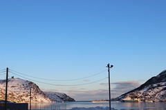 St. John's Harbour (Ms Michelle Snaps) Tags: winter sunlight snow cold ice water st clouds sunrise newfoundland harbour hill stjohns hills powerlines nl johns newfoundlandandlabrador