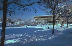 Academic Quadrangle Snow 2 (jvde) Tags: snow film nikon sfu burnaby f601 nikonf601 3570mmf3345nikkor