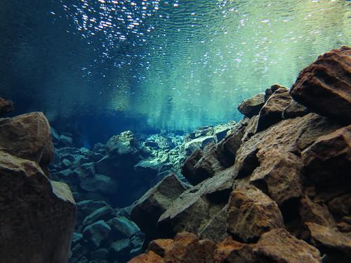 Iceland 2014 - Silfra dive - IMG_0531