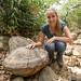 Casco de tartaruga fossilizado?