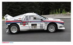 Lancia 037 Rallye EVO 2 1982 - Deopito (A) Chopard Racecar Trophy Tauplitzalm Austria © 2015 Бернхард Эггер :: ru-moto images   pure passion 0972