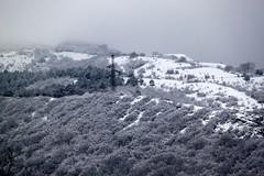 Jvari, Georgia (Taylor Mc) Tags: mountain mountains georgia cross monastery caucasus sakartvelo caucasian mtskheta jvari