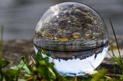 Die Donau mit Rathaus und Dom // Mit der Kugel durch Regensburg (seyf\ART) Tags: town stadt refraction regensburg ratisbon crystalball glaskugel
