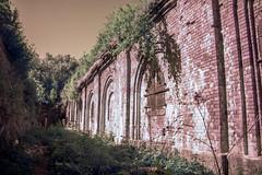WeirdWall (BigWhitePelican) Tags: green wall finland helsinki bricks may infrared 2016 vallisaari canoneos7d adobelightroom6