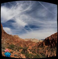 a brilliant day (rovingmagpie) Tags: panorama pano kani pinkhat vertorama