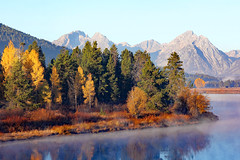 Early Morning Steam On The River (Robert F. Carter Travels) Tags: autumn mountains fall fog river foggy rivers snakeriver grandtetons tetons mountainscape grandtetonnationalpark oxbowbend