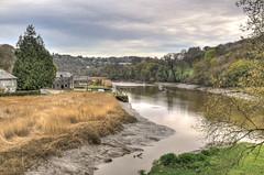 The River Tamar at Cotehele Quay (Baz Richardson) Tags: cornwall rivers lowtide quays rivertamar cotehelequay