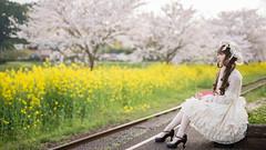 DSC_9575 (nana_tsuki) Tags: