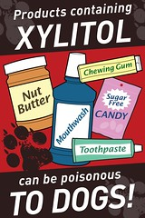 Xylitol Poisonous to Dogs! (The U.S. Food and Drug Administration) Tags: dog pet xylitol fda toxicity petsafety foodanddrugadministration martinehartogensis