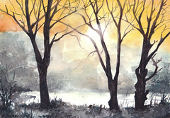 Zimowe drzewa (Caro84) Tags: las water forest watercolor painting paint aquarelle poland polska polish polen watercolour acuarela polonia obraz aquarela pologne aquarell acquerello polsko akvarell  akvarel  akwarela