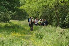 DSC02086 klein.jpg (henk.wallays) Tags: people macro nature closeup europa belgium wildlife natuur location westvlaanderen aaaa vlaanderen natuurpunt aalterbrug henkwallays
