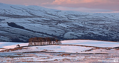 Dawn in Wensleydale, Yorkshire Dales National Park, England. UK (Wend's photography) Tags: park winter england snow english rural landscape photography scenery europe britain yorkshire scenic hills national moors northyorkshire dales snowscape yorkshiredales moorland winterscape wensleydale penhill northyorks