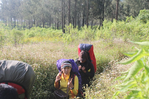 "Pendakian Sakuntala Gunung Argopuro Juni 2014 • <a style=""font-size:0.8em;"" href=""http://www.flickr.com/photos/24767572@N00/27093215141/"" target=""_blank"">View on Flickr</a>"