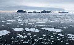 P1110698 (TallGrass-IA) Tags: snow nature norway lumix panasonic svalbard arctic micro g6 43 linblad 1235 expeditions mirrorless