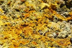 Sulphur (Derbyshire Harrier) Tags: yellow volcano spring crystals crater sicily sulphur geology volcanic etna fumaroles boccanuova