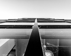 Looking Up the Glass (that_damn_duck) Tags: southcarolina unitedstates glass vertical architecture building outdoor bw blackwhite nikon