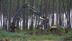 Forexpo2016 (33) (TrelleborgAgri) Tags: forestry twin tires trelleborg skidder t480 forexpo t440