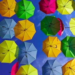 Umbrella Heaven (Shepshed Camera Club) Tags: umbrella colourful octagon highlycommended