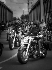 Biker 1 bei den Harley Days (dieterkolm) Tags: harley davidson dieter kolm hamburg biker motorrder
