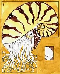 Golden Nautilus (Alberto J. Almarza) Tags: golden geometry nautilus goldenratio geometricart geometricdrawing albertojalmarza