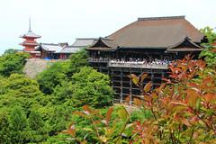(pietylove) Tags:    kyoto