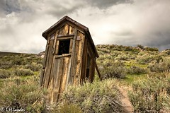 Leaning Outhouse (Photo_Engineer) Tags: park ca usa nature insects ghosttown bodie