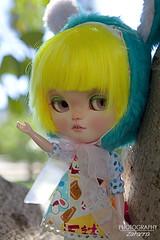 Kdd Málaga 10/06/2016 (Zatannilla) Tags: toy toys doll dolls blonde blythe dolly bunnyhat yellowhair kiwieyes