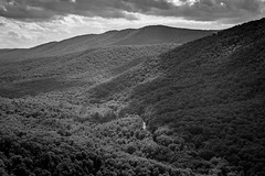 Buzzard Rock North (ben.gentile) Tags: road blue summer bw cliff mountains nature clouds contrast forest freedom virginia george washington haze nikon elizabeth hiking relaxing royal windy sunny front ridge national valley serenity d750 serene winding furnace gw f28 tranquil 2470