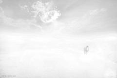 Last Stand (naimocean) Tags: tariqmahmudnaim conceptualphotography coxsbazar horse horizon fog sky beach