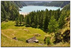 Lago dei Cavalli (Alfoja) Tags: italy alps italia piemonte alpi montagna cavalli piedmont antrona ossola visitpiedmont visitpiedmontitaly