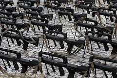 FAMAS sur les Champs-Elysées pendant la mise en place des troupes (Model-Miniature / Military-Photo-Report) Tags: paris 14 du neo juillet champselysées nouvelle militaire anzac matin australie défilé préparatifs parisien zélande zelandais