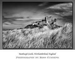 Bamburgh Castle (Ross Cumming) Tags: blackandwhite bw holiday castle landscape northumberland bamburgh 2016 bamburghcastle