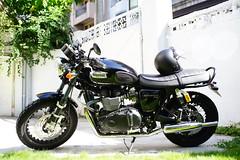 Triumph T100 (mojocoffee) Tags: triumph motorcycle t100 ohlins