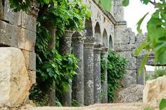 Ruins (sydneykmking) Tags: old travel trees green love nature architecture turkey ruins outdoor exploring growth pillars turkei