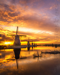 Hollands Glory (Ron Giesbers) Tags: morning winter red vacation sky cold holland colour mill water sunrise landscape early nederland dutchscape