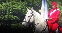 En El Bicentenario (Eduardo Amorim) Tags: horses horse southamerica argentina bandeira criollo caballo cheval caballos flag bandera cavalos pferde cavalli cavallo cavalo pferd ayacucho pavillon hest drapeau hevonen chevaux pavilho  bandiera amricadosul hst pabelln  amriquedusud provinciadebuenosaires   sudamrica suramrica amricadelsur  sdamerika crioulo caballoscriollos criollos   buenosairesprovince americadelsud  crioulos cavalocrioulo americameridionale caballocriollo eduardoamorim cavaloscrioulos  flagge coloradosdelmonte