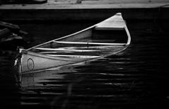 requiem for a canoe (Jen MacNeill) Tags: blackandwhite bw white lake black water boat pond sink canoe sunk sinking gypsymarestudios jennifermacneilltraylor jmacneilltraylor jennifermacneill