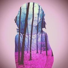 Ghala (FaisalGraphic) Tags: trees tree art girl rain forest design edit faisal lonley  junglr  alghamdi faisalgraphic  faisalalghamdi faisalgra
