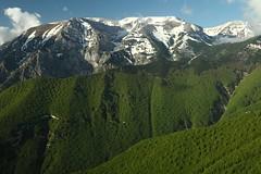 (del drago) Tags: wild italy mountain primavera forest nationalpark spring italia berge acquaviva montagna appennino bosco majella maiella appennini parconazionale murelle selvaggio focalone