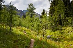 Hike to Shadow Lake Lodge (Kathy~) Tags: shadow lake canada mountains path hike lodge banff fc shadowlakelodge
