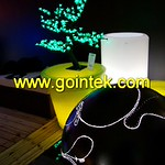 Colorful LED Graden Plant Pot With Remote Control thumbnail
