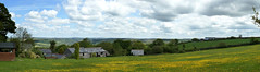Pullington Barn (SteveJM2009) Tags: uk panorama june landscape cornwall buttercups stevemaskell sweetshouse 2013 pullingtonbarn
